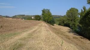 Zona Capraia Fiorentina sfalcio erba  2020